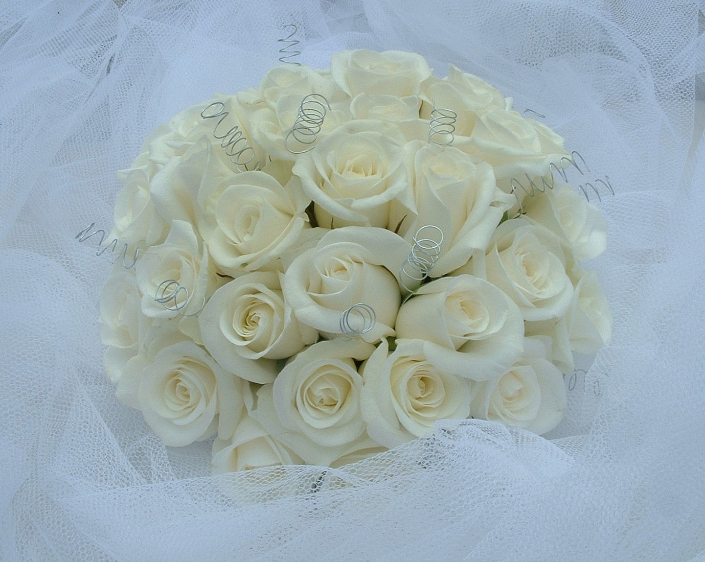 wedding flowers for bride in a hand tied style just roses with silver springs