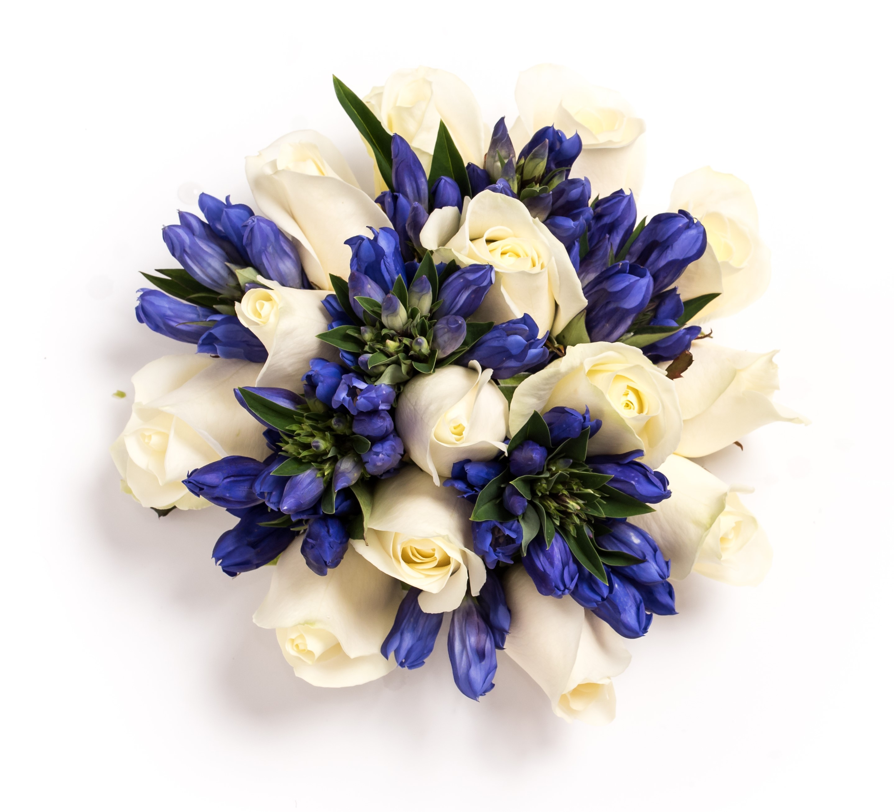 gentini ivory rose blue bouquet