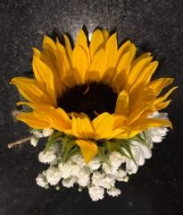 sunflower bound string