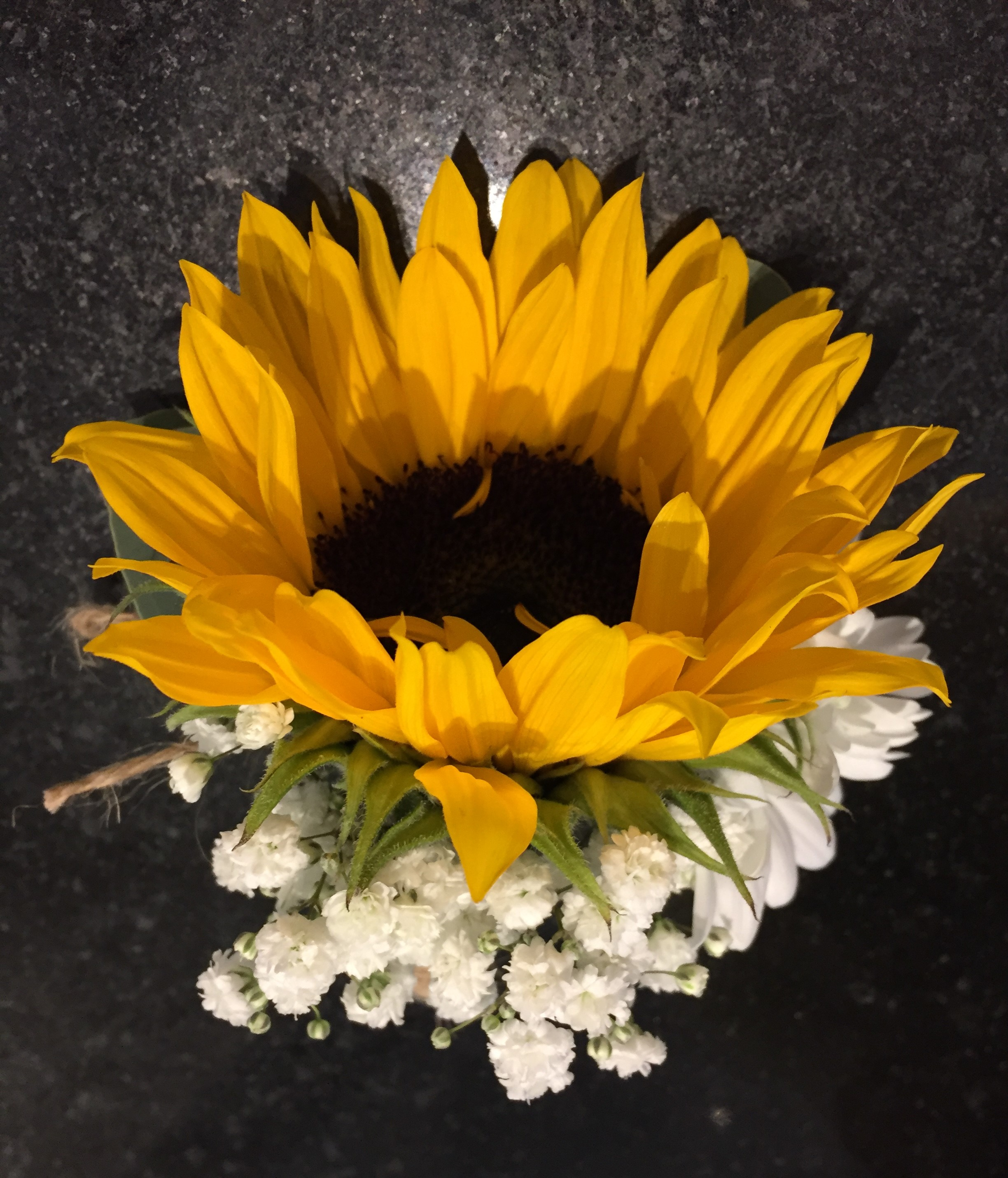 sunflower bound string