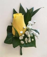 ivy yellow rose