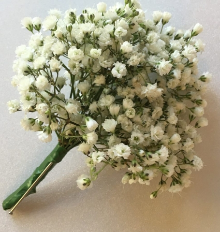 gypsophila groomsmen buttonhole or ladies