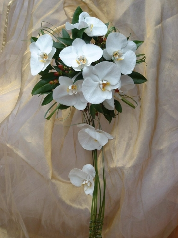 white orchid shower bouquet wootton park