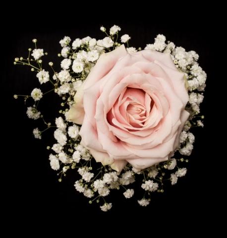 wrist corsage sweet avalanche bridal florist redditch