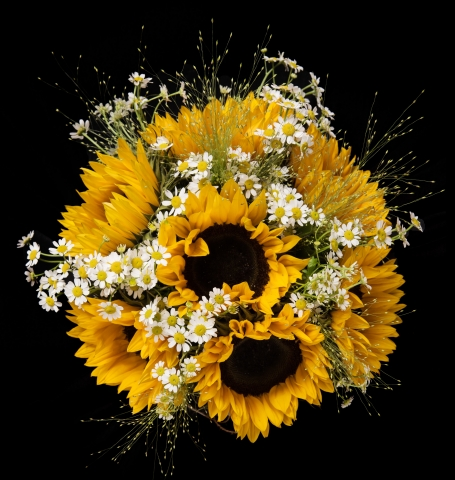 sunflower daisies in the country wedding