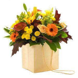 sunlight flowers