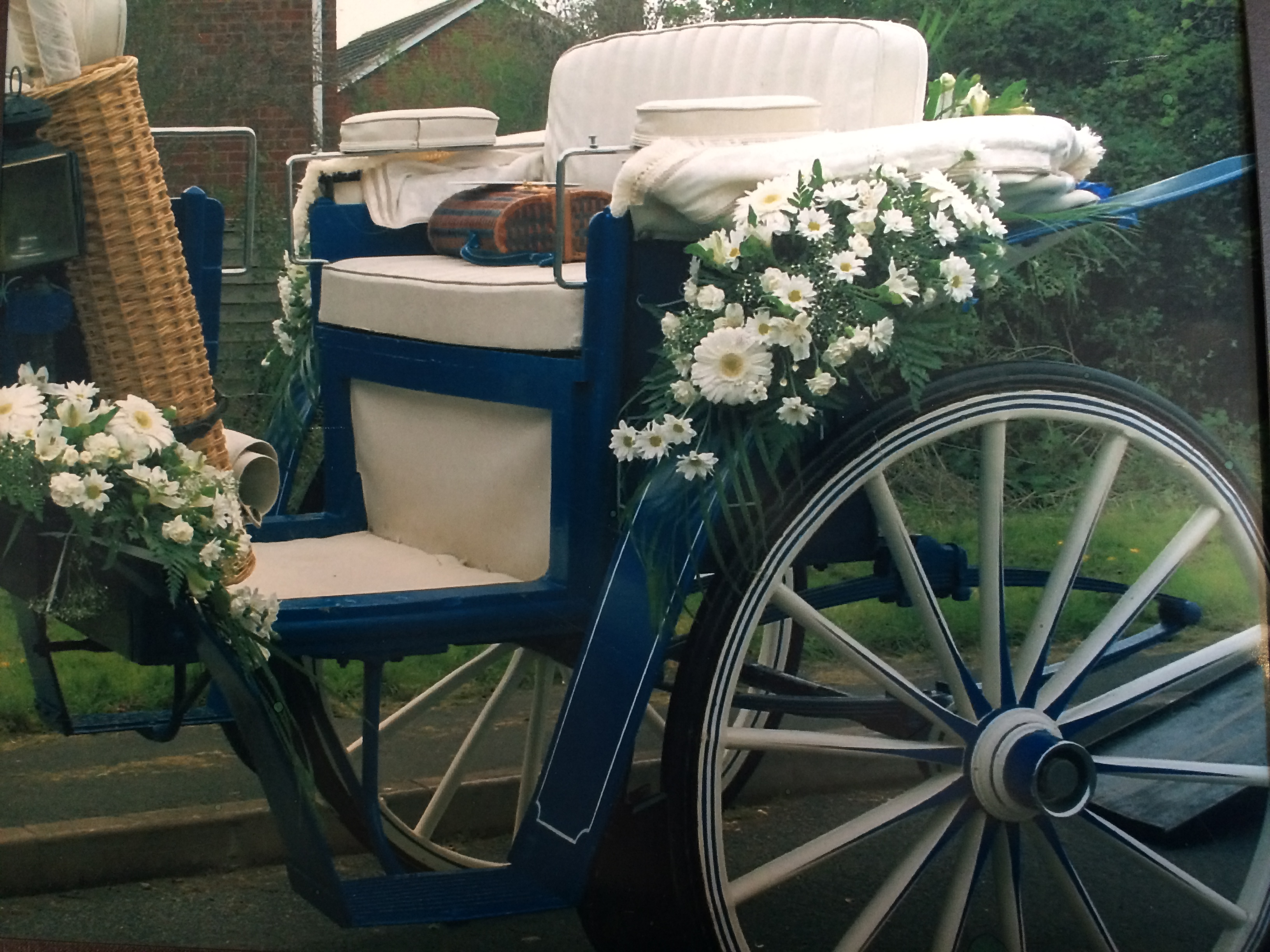horse-and-carriage-wedding-redditch (2)