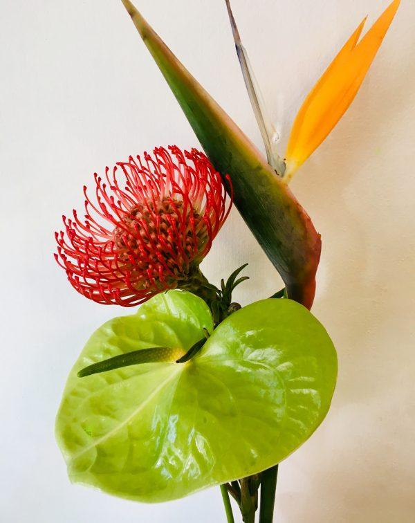 tropical florist choice